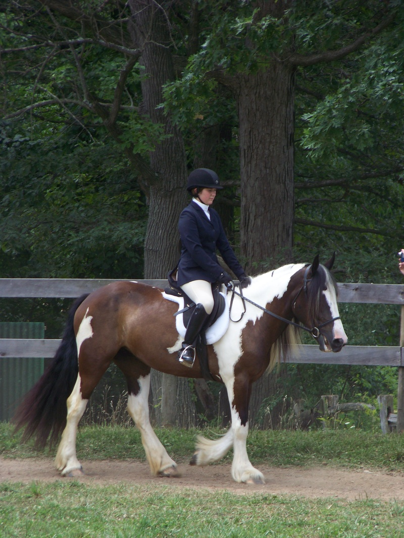 Sam/Abby HI Acres Dressage/Hunter Show 2010